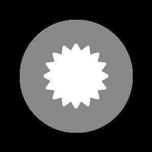 light_gray_needleball